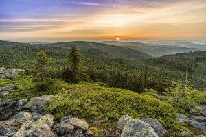 Der Sonnenaufgang am Lusen im Bayerischen Wald. Foto: Felix Mittermeier | pixabay.com