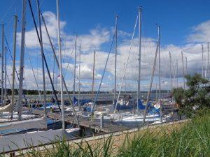 Wie überdimensionale Spargelstangen ragen die Masten dieser Segelboote, die im Hafen von Niendorf vertäut sind, in den weiß-blauen Sommerhimmel. – Foto: Dieter Warnick