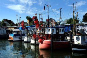 Kutter im Hafen von Niendorf. – Foto: Michael Schwartz